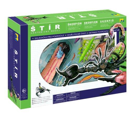 Mac Toys Anatomický model 4D - Škorpión - Výprodej