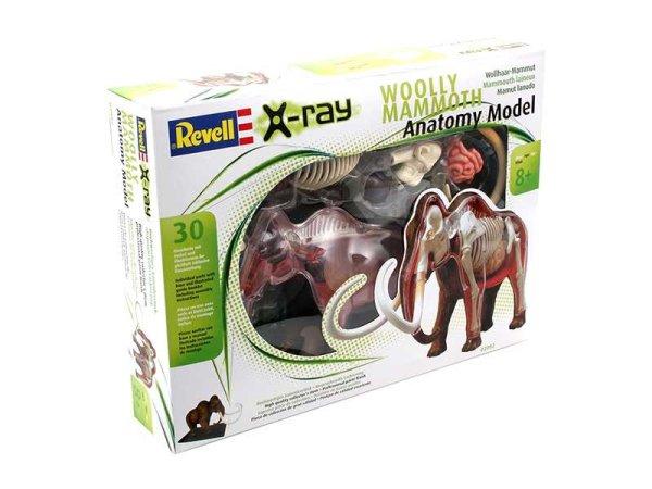 Revell Anatomický model X-ray SnapsKit - Mamut - Výprodej