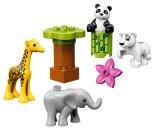 LEGO Duplo 10904 - Zvířecí mláďátka